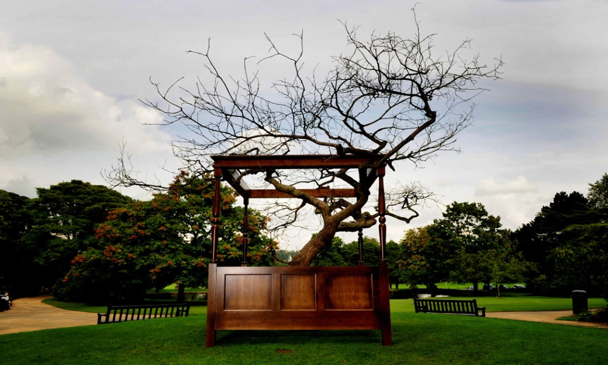 mid-pennine arts tree image 1